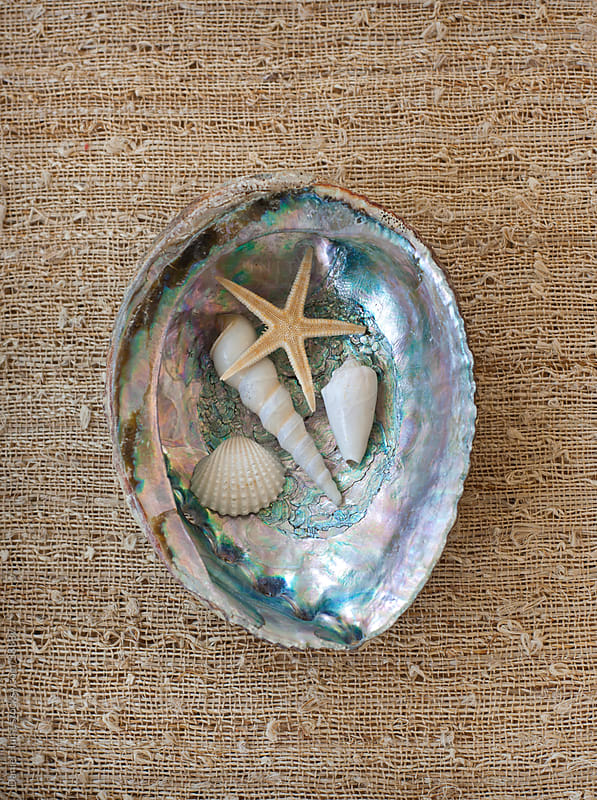 Abalone shell with collection of beach objects by Daniel Hurst for Stocksy United
