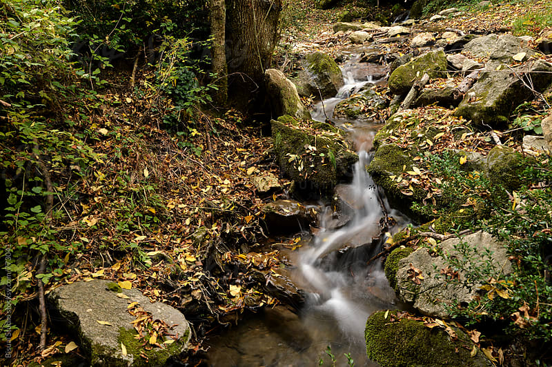 Beautiful creek in the Pyrenees, Spain by Bisual Studio for Stocksy United