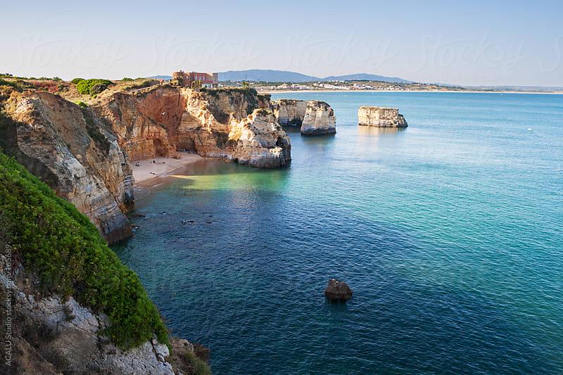 Luxury home with ocean views by ACALU Studio for Stocksy United