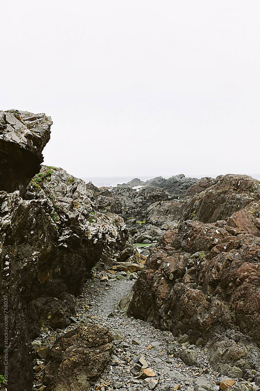 rocky coastline - digital file by Andrew Cebulka for Stocksy United