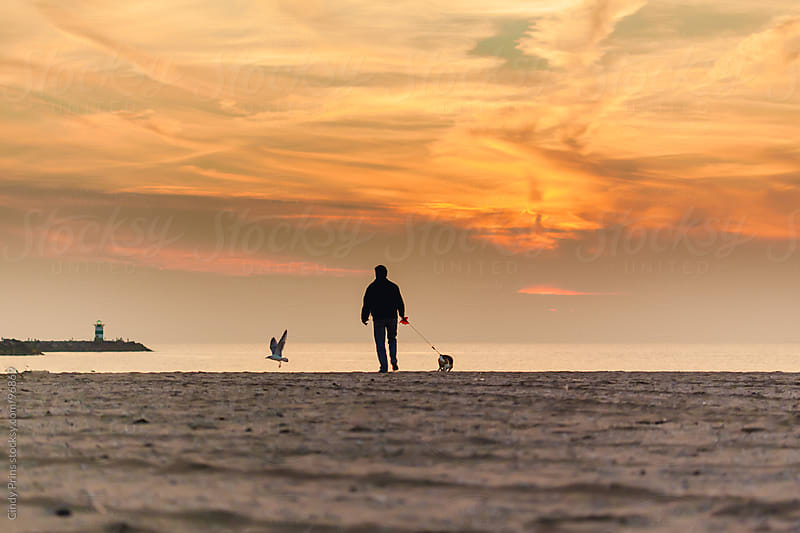 The silhouette of a man and his dog on the beach at sunset by Cindy Prins for Stocksy United