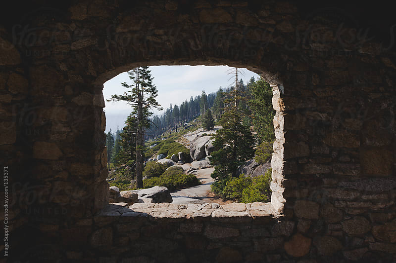 view of Yosemite forest through window  by Image Supply Co for Stocksy United