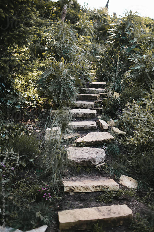 stone steps in a garden of greenery by Nicole Mason for Stocksy United