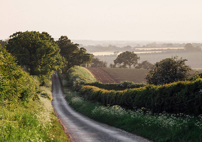 Remote rural road at sunset. Norfolk, UK. by Liam Grant for Stocksy United