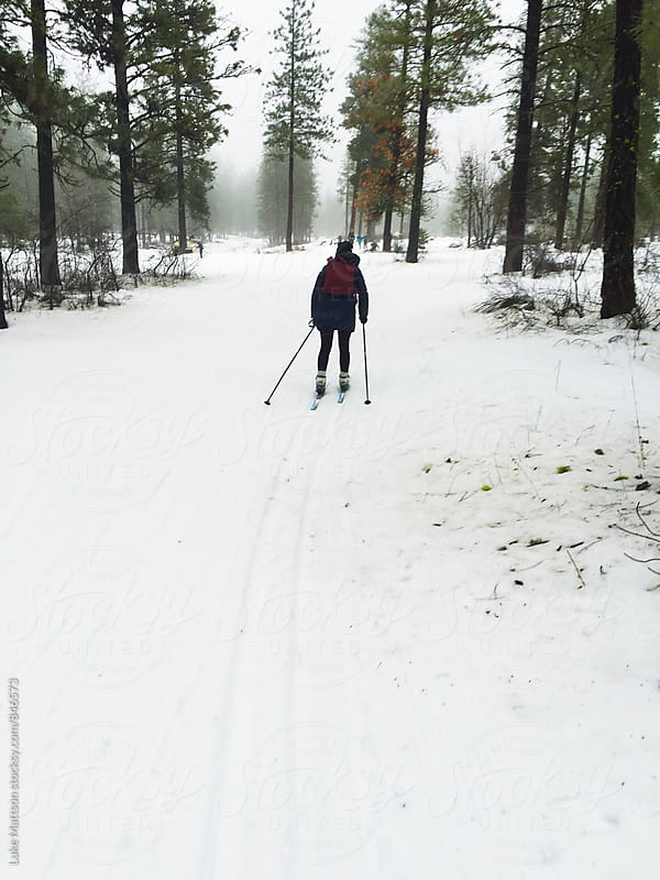 Young Woman Wearing Backpack Cross Country Skiing Through Snowy Forest by Luke Mattson for Stocksy United