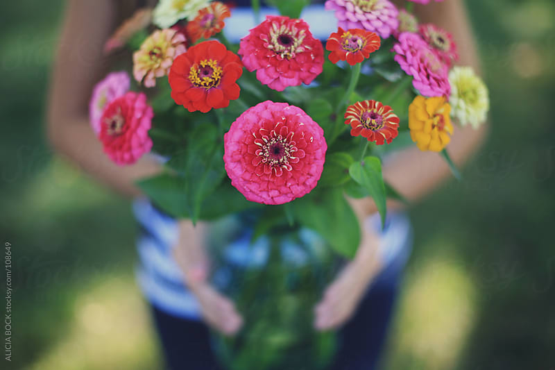 Zinnia Flower Bouquet by ALICIA BOCK for Stocksy United