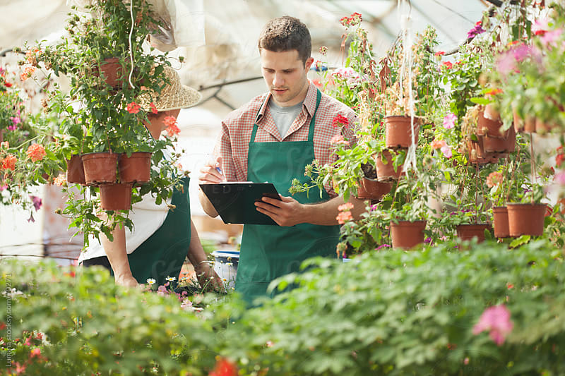 Nursery Garden Worker Listing Flowers by Lumina for Stocksy United