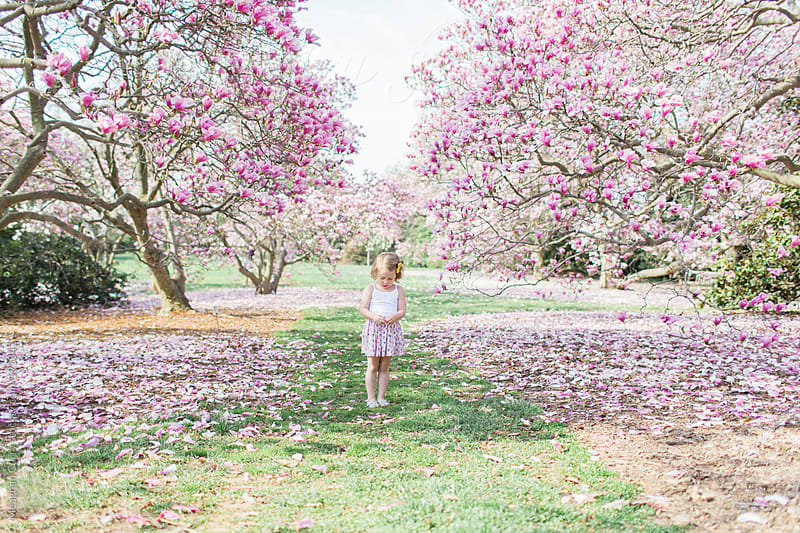 little girl standing beneath spring blooms by Meaghan Curry for Stocksy United