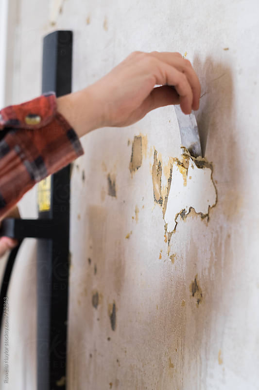 Stripping old wallpaper during home renovation by Rowena Naylor for Stocksy United