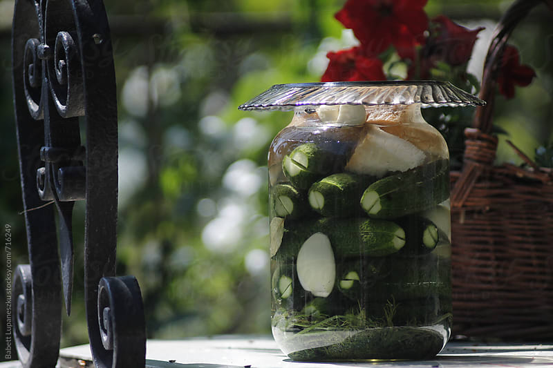 Traditional fermented cucumber pickles  by Babett Lupaneszku for Stocksy United
