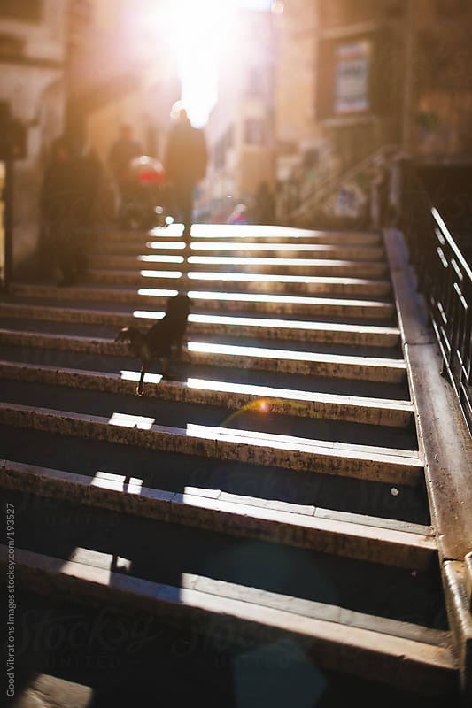 Steps in Venice by Good Vibrations Images for Stocksy United