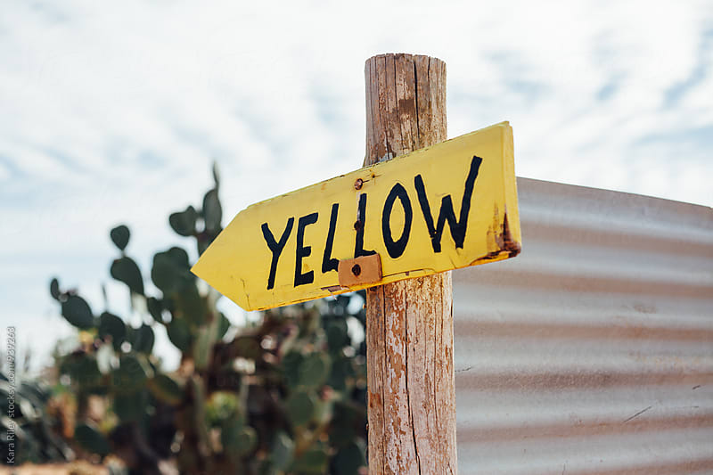 Yellow Wooden Sign in Cactus Garden by Kara Riley for Stocksy United