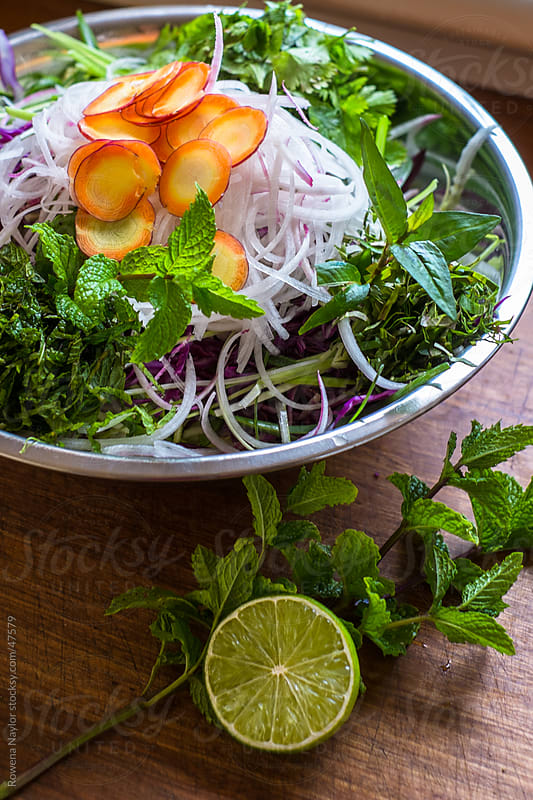 Asian Coleslaw Ingredients by Rowena Naylor for Stocksy United