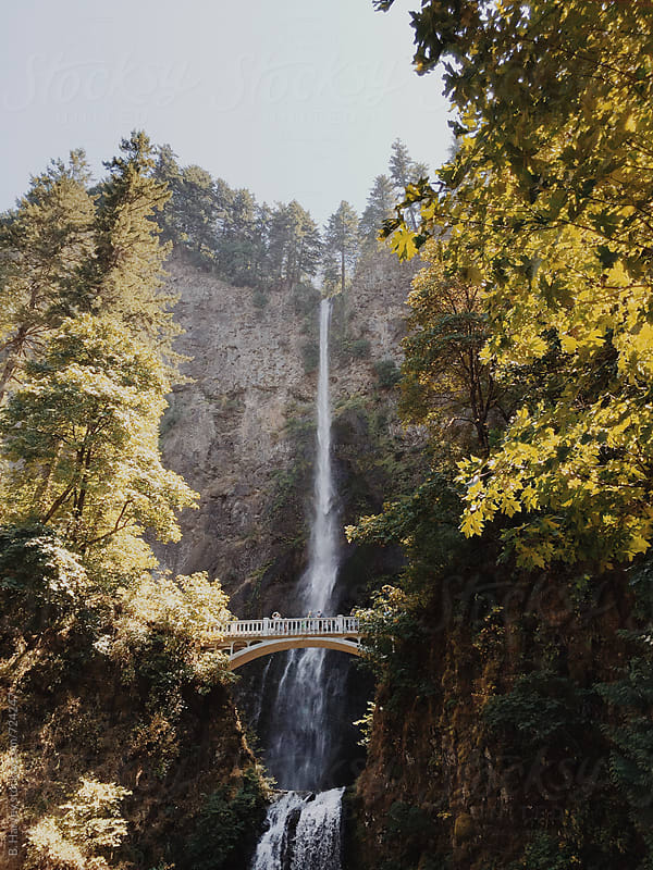 Beautiful Waterfall in Oregon by B. Harvey for Stocksy United