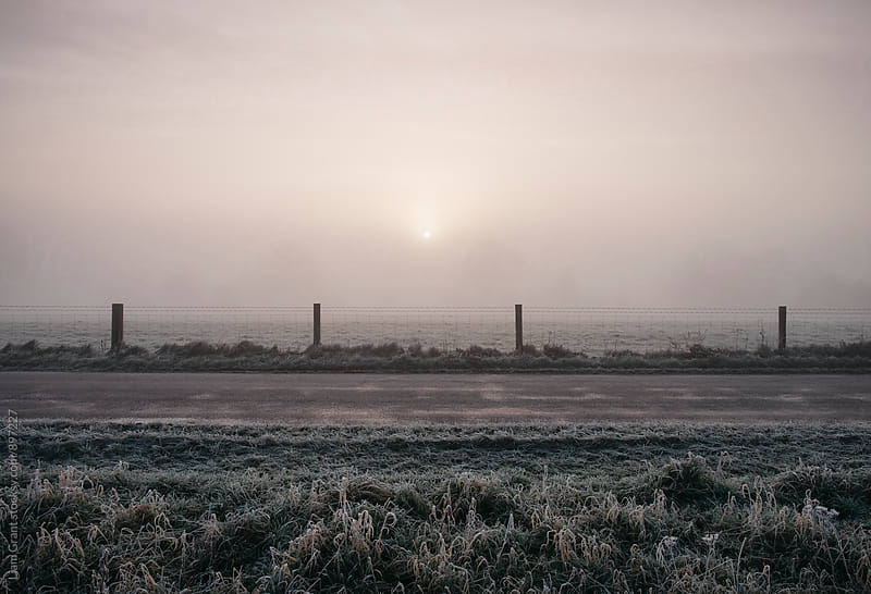 Sunrise through fog on a frosty morning. Norfolk, UK. by Liam Grant for Stocksy United