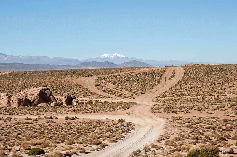 Winding tracks in a high altitude desert. by Mike Marlowe for Stocksy United