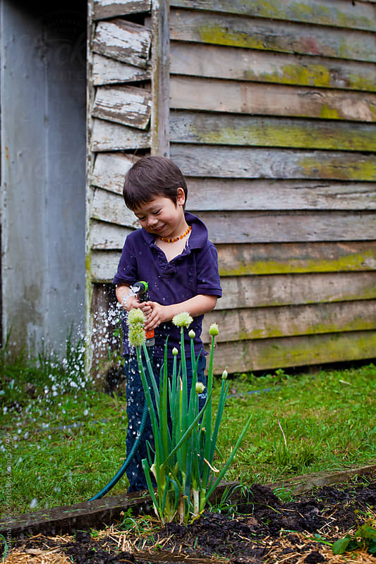 Little Boy helping with the garden by Rowena Naylor for Stocksy United