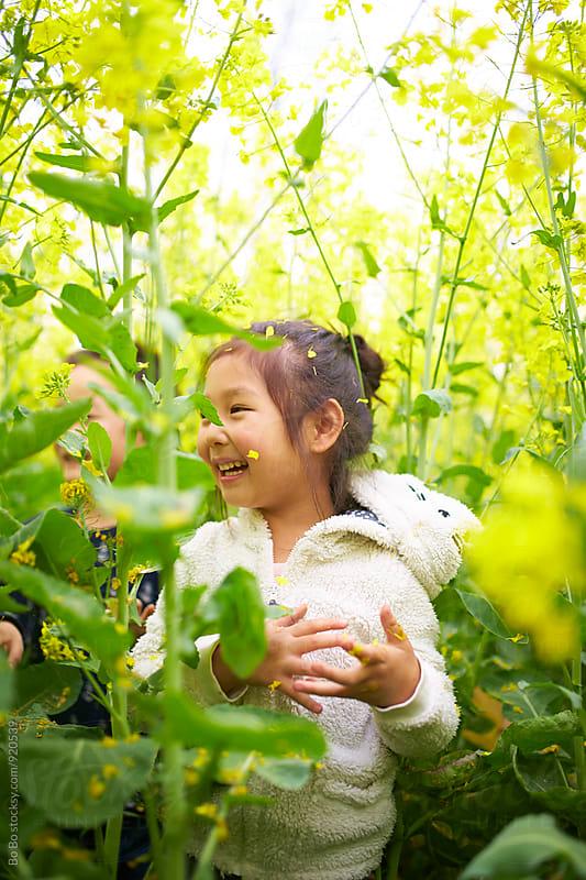 little asian girl in the rape flower field by Bo Bo for Stocksy United