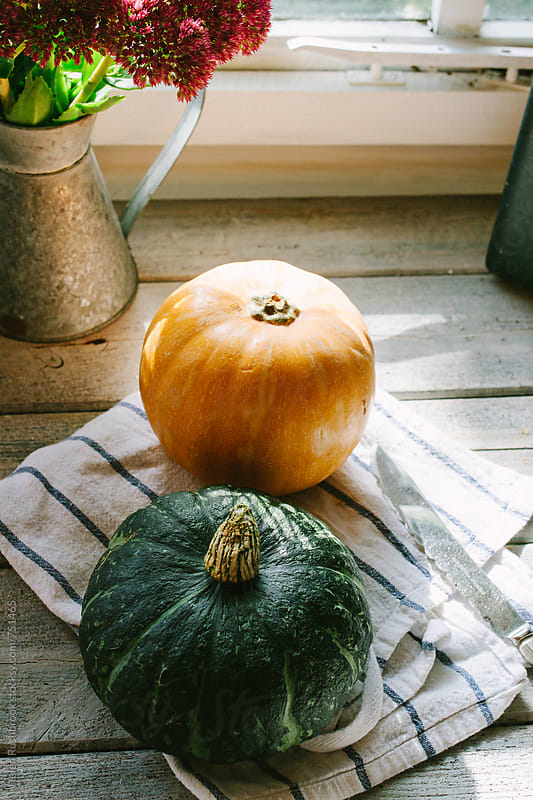 Autumn squash on a sunny table ready to be cooked. by Helen Rushbrook for Stocksy United