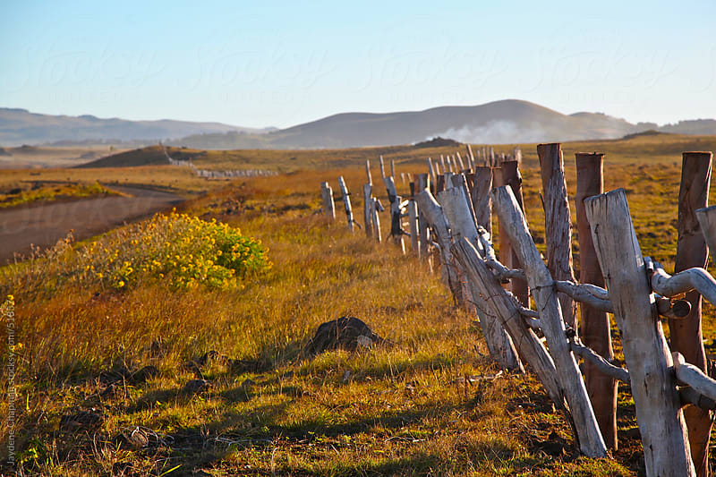 Golden sunrise on a farm paddock with a leaning rustic wooden fence, Easter Island, Chile by Jaydene Chapman for Stocksy United