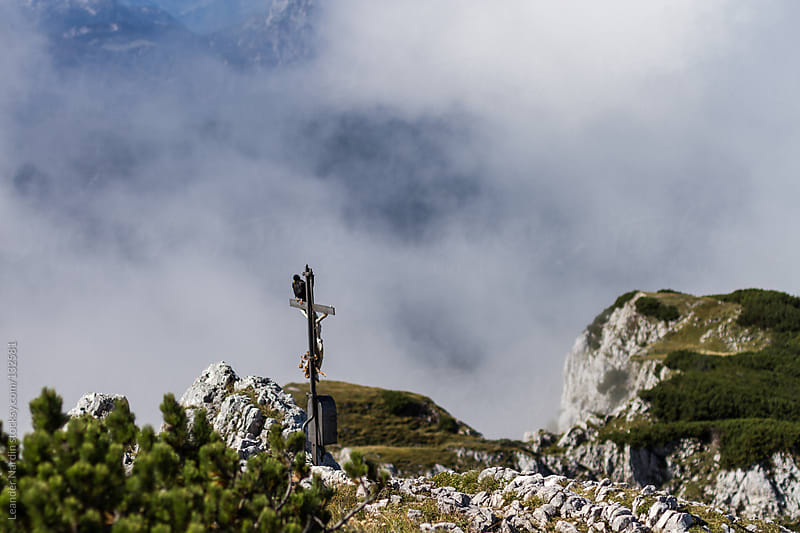 alpine chough sitting on a crucifix in the austrian alps by Leander Nardin for Stocksy United