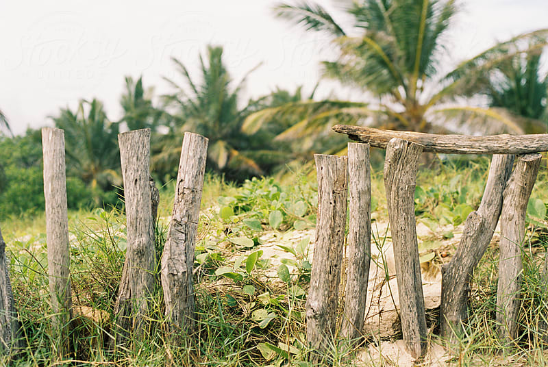 Sloppy collection of fenceposts on beach by Joey Pasco for Stocksy United