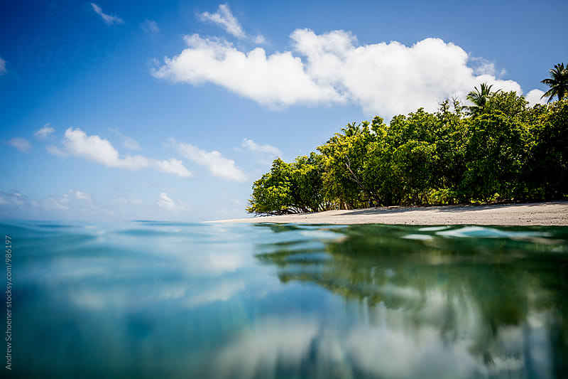 island 2 by Andrew Schoener for Stocksy United
