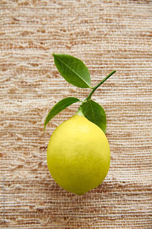 Lemon on burlap  by Trinette Reed for Stocksy United