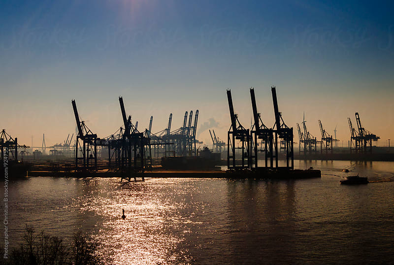 Cranes in the morning by Photographer Christian B for Stocksy United