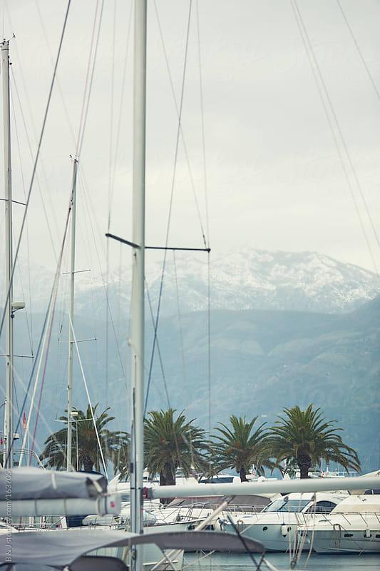 Boats docked at Marina by B & J for Stocksy United