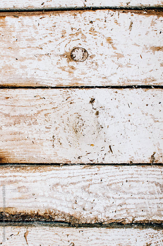 whitewashed board background by Deirdre Malfatto for Stocksy United