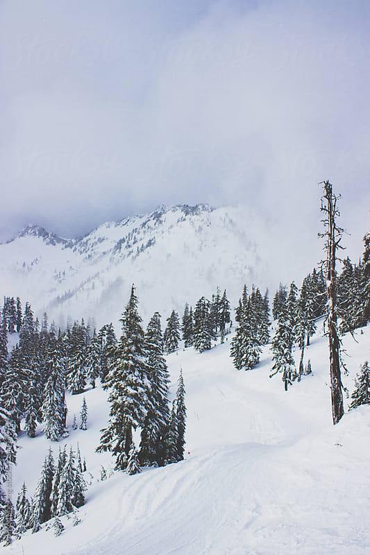 Powdery Ski Slope by Bronson Snelling for Stocksy United