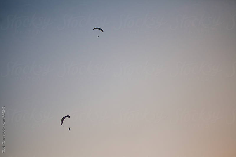 Paragliding  by Giada Canu for Stocksy United