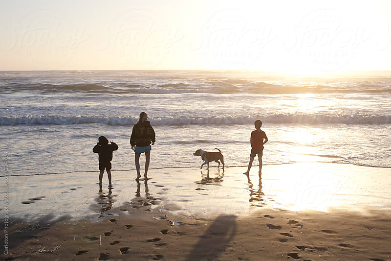 Three kids and a dog chase waves on the beach at sunset by Carleton Photography for Stocksy United