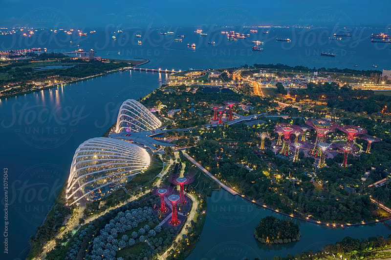 Aerial View of Garden By The Bay by Jacobs Chong for Stocksy United