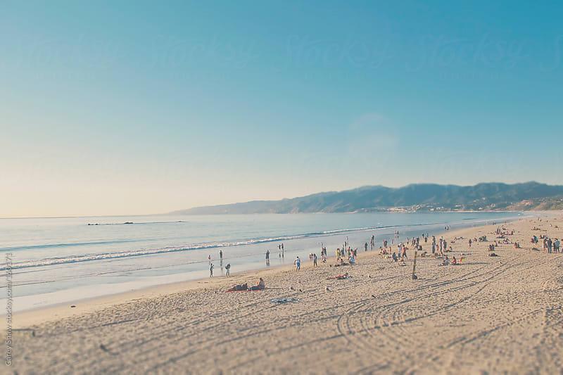 Beach landscape by Carey Shaw for Stocksy United