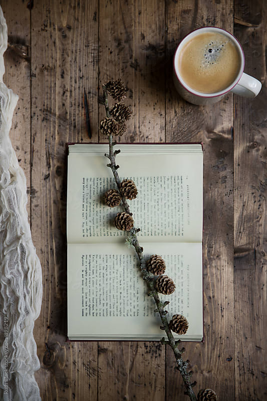 Coffee with vintage book and pine cones by Ruth Black for Stocksy United