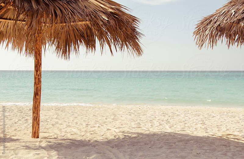 palm umbrella  beach by Tomas Kraus for Stocksy United