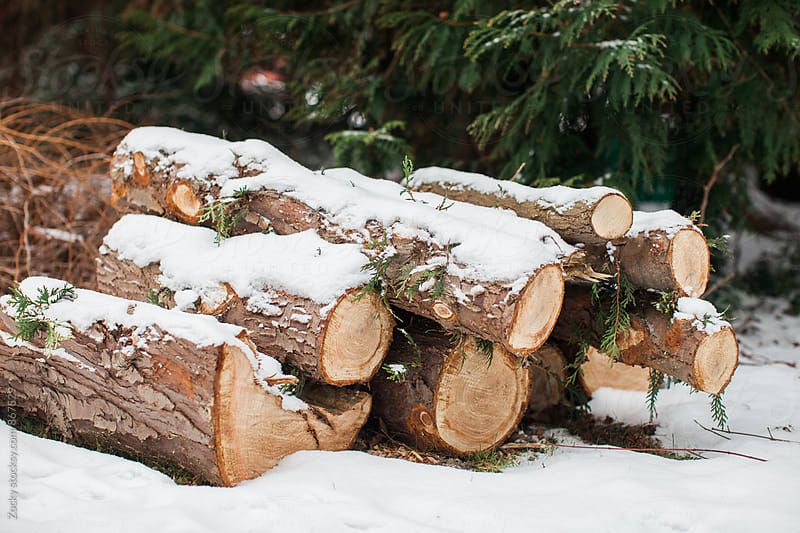 Stacked firewood covered with snow by Zocky for Stocksy United