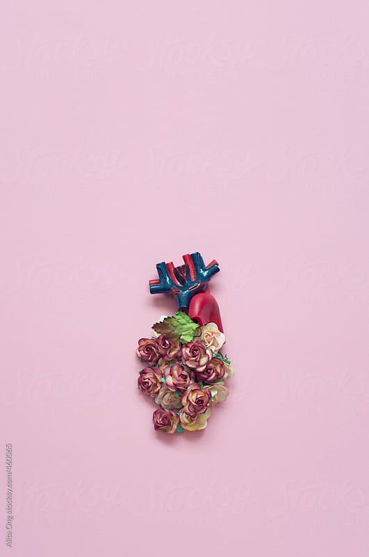 Floral heart by Alita Ong for Stocksy United
