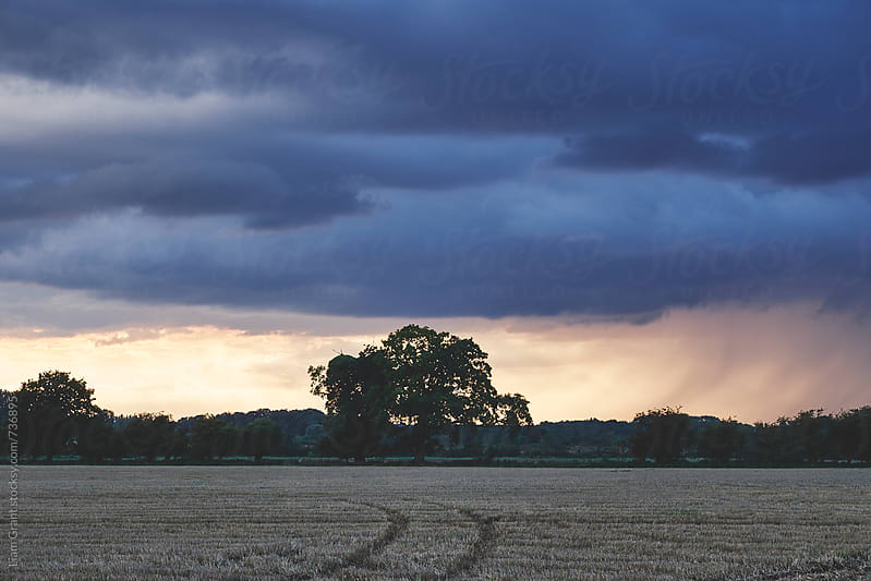 Dark stormy sky over rural landscape at sunset. Norfolk, UK. by Liam Grant for Stocksy United