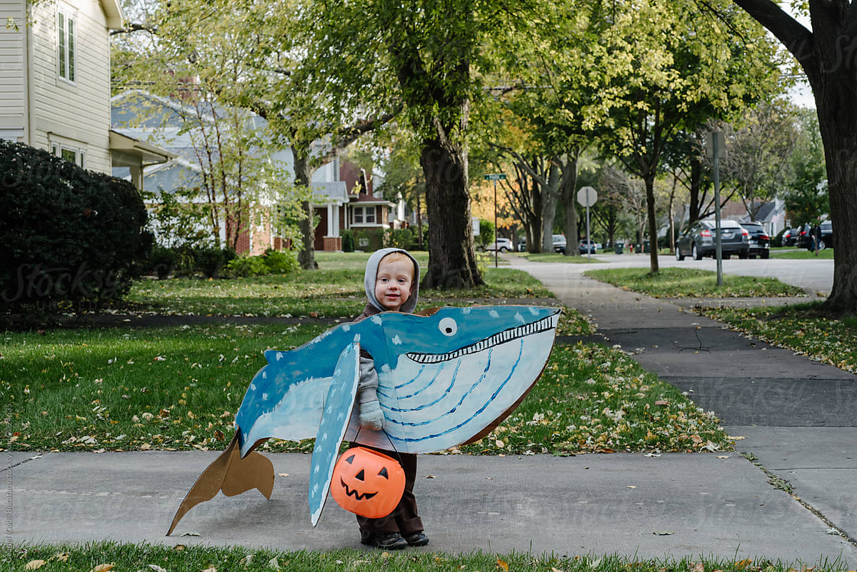cute boy in whale halloween costume | stocksy united