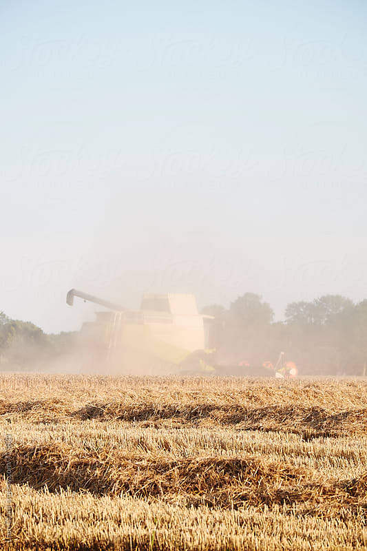Combine harvester working in a field at sunset. Norfolk, UK. by Liam Grant for Stocksy United
