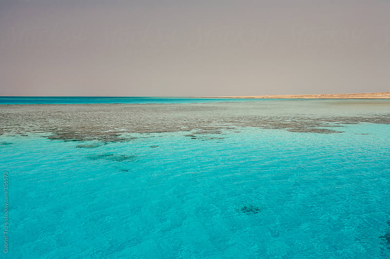 Red Sea landscape with sand strip in the distance by Gabriel Tichy for Stocksy United