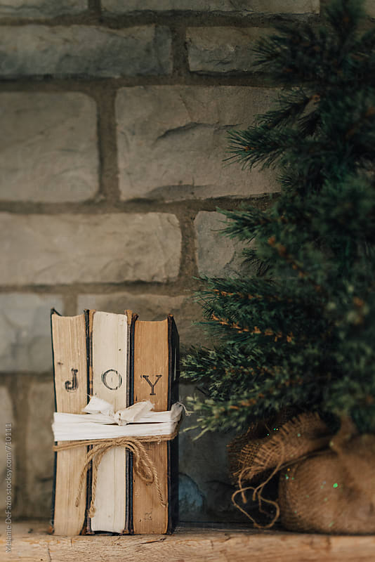 Joy by Melanie DeFazio for Stocksy United