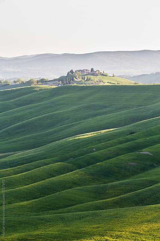 Farm in Tuscany by Marilar Irastorza for Stocksy United