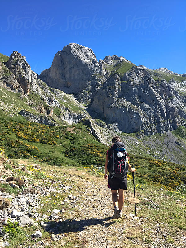 Back view of a female hiker walking on a mountain trail by Luca Pierro for Stocksy United