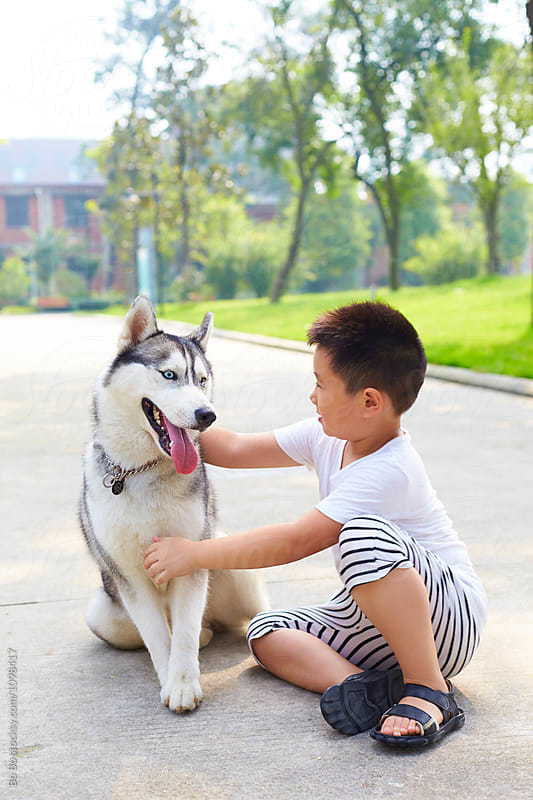 lovely little boy playing with his husky dog outdoor by cuiyan Liu for Stocksy United