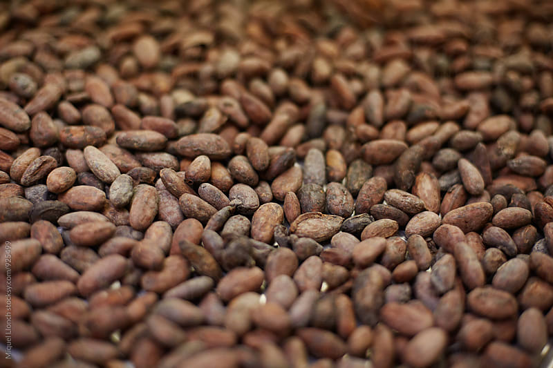 Close up of toast cocoa beans by Miquel Llonch for Stocksy United