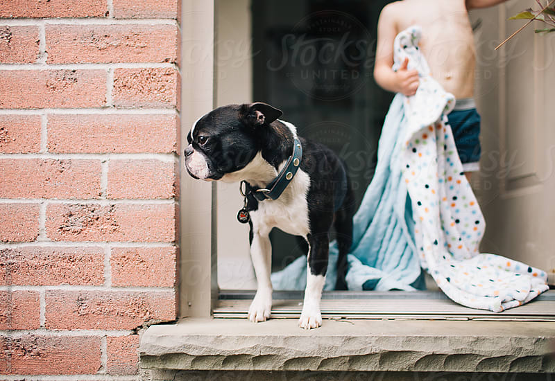 A dog peeking out of the exterior door with his little boy behind him. by Sarah Lalone for Stocksy United